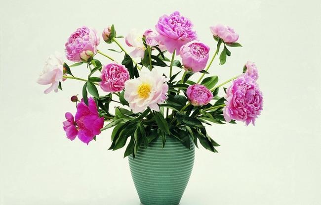 fotografii-krasivyx-buketov-cvetov-10