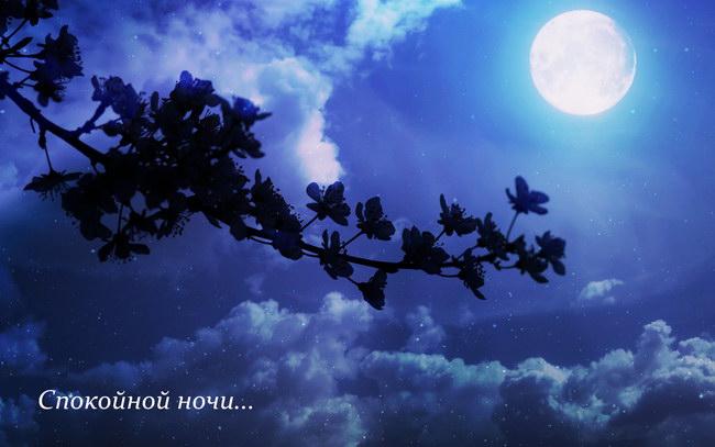 «Спокойной ночи, любимая»: картинки с надписями (романтические)