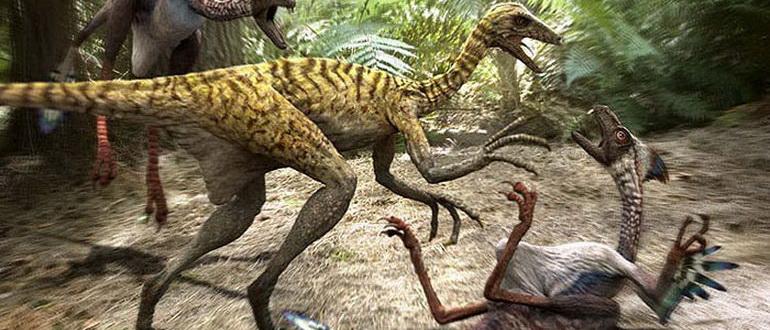 кадр из фильма Доисторический парк (2006)