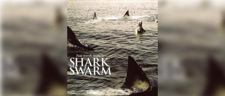 фильм Стая акул (2008)