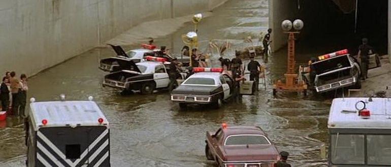 сцена из фильма Аллигатор (1980)