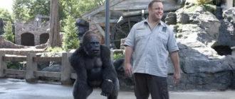 фильм Мой парень из зоопарка (2011)