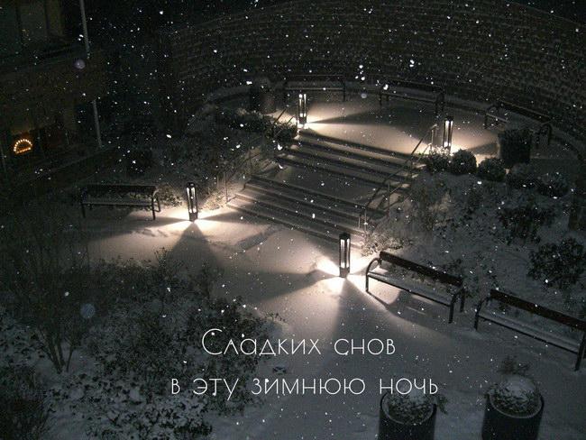 Спокойной зимней ночи: картинки