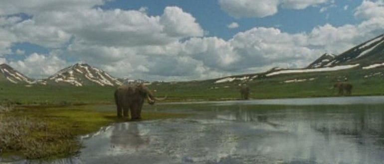 кадр из фильма Первобытная Америка (2002)