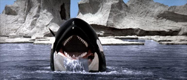 кино про акул и крокодилов ужасы