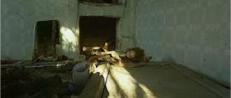 кадр из фильма Чернобыльские джунгли. 20 лет без человека (2006)