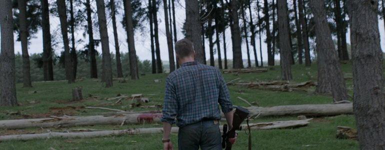 кадр из фильма Стая (2015)