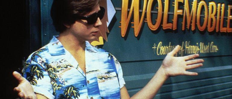 Волчонок (1985)