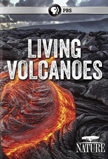 Жизнь на вулкане (2019)