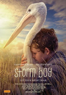 постер к фильму Штормовой мальчик (2019)