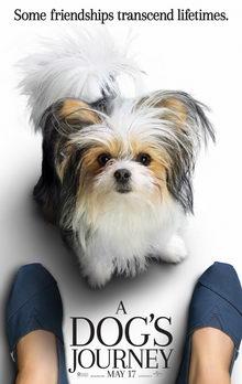 плакат к фильму Собачья жизнь 2 (2019)
