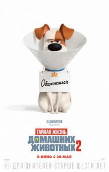 постер к мультфильму Тайная жизнь домашних животных 2 (2019)